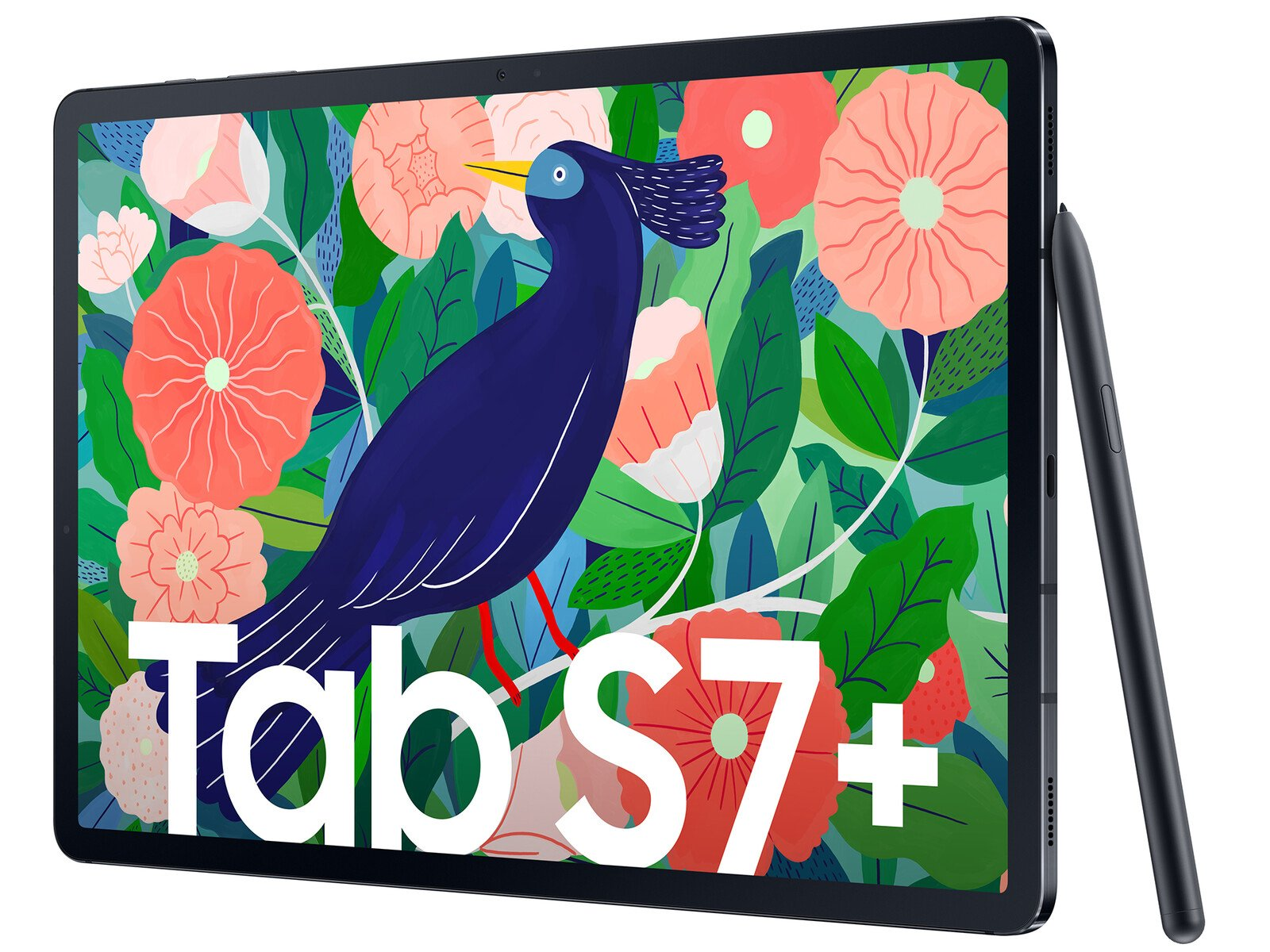 Imagem do novo Tablet S7+
