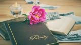 Bráulio Bessa: melhor livro de poesias, guia de compras